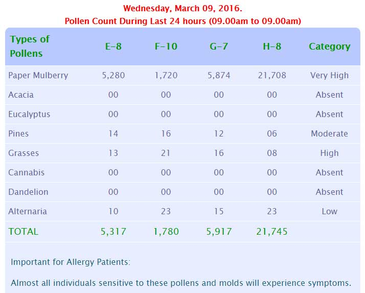pollen count for today