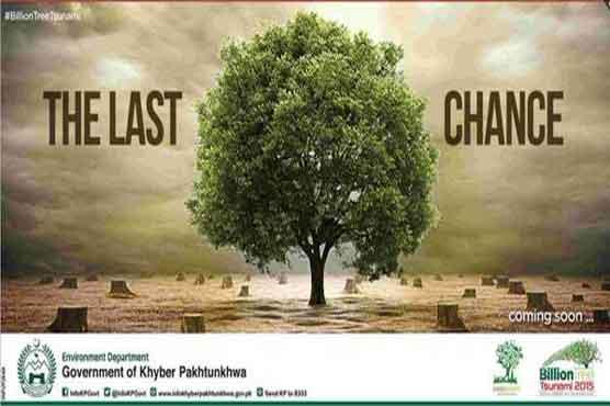 Image result for Change is now visible beyond the billion tree tsunami in KPK: Pervez Khattak