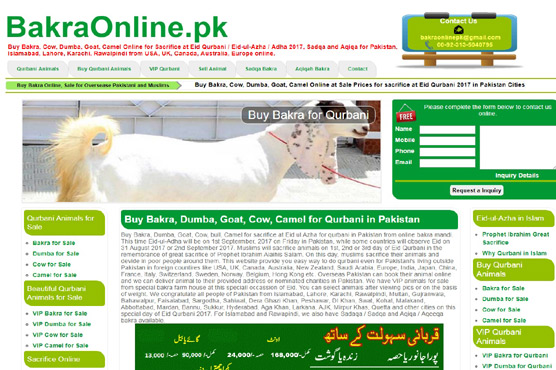 Online Bakra Mandi finds no Pakistani buyers - Pakistan