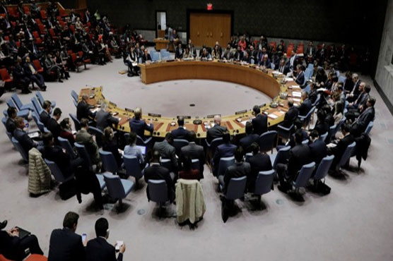UN Security Council calls on all sides in Yemen to 'de-escalate'