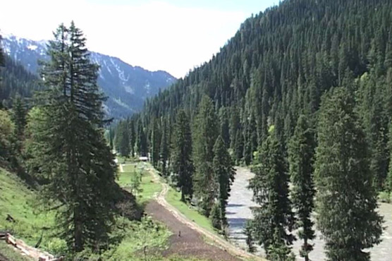 International Mountain Day: Pakistan still battling to protect its mountains