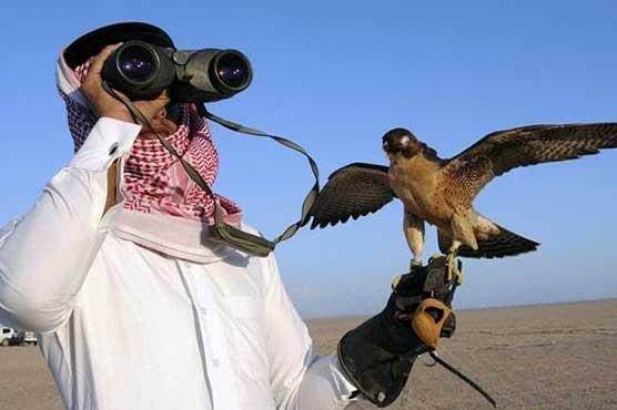 Qatari prince's convoy attacked in Musakhel