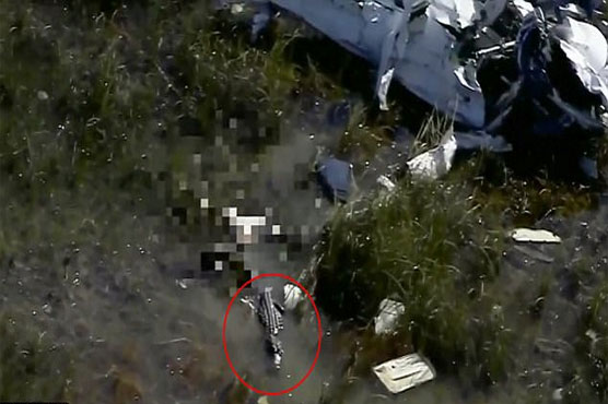 News helicopter spots alligator 'chewing' pilot after plane crash