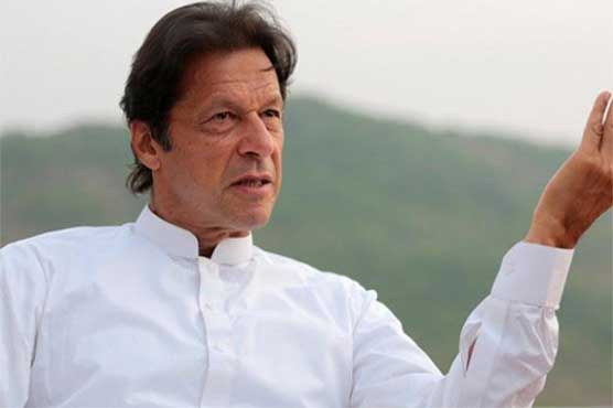 Imran did not have any source of income besides cricket, lawyer