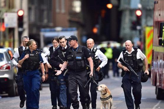 Twelve arrested after 'evil' London terror attack
