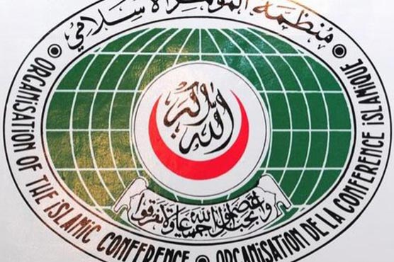 OIC 'condemns use of force' by Indian forces in Kashmir: Pak