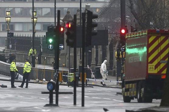Seven arrests over British parliament terror attack: police
