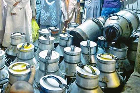 PFA wastes large quantity of unhealthy milk in Lahore