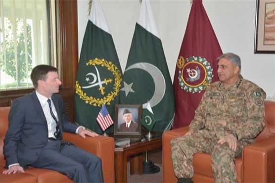 US Ambassador acknowledges Pak efforts in war on terror
