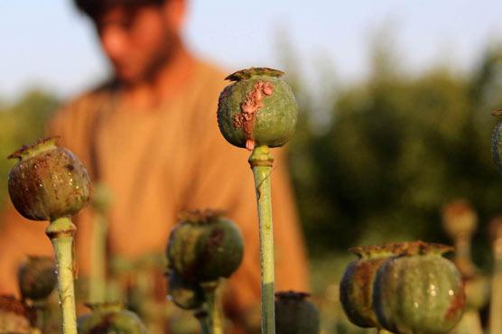 The air Raids against labs of heroin in Afghanistan