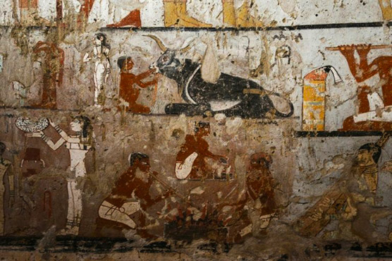 4300-Year-Old Tomb of Royal Female Official Found in Egypt