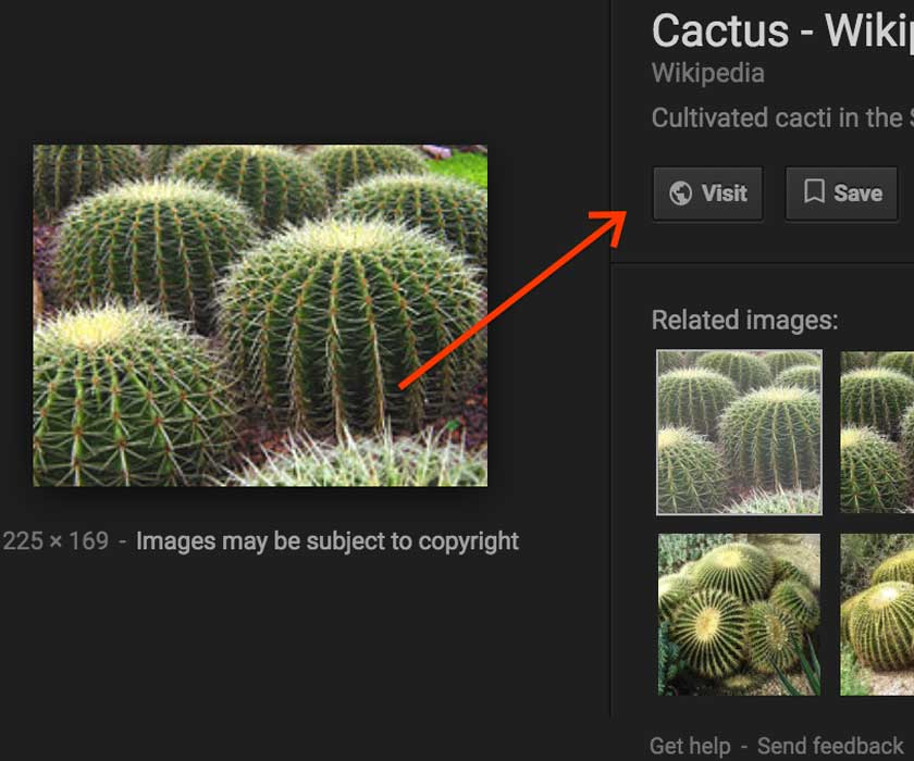 Google changed the image search function