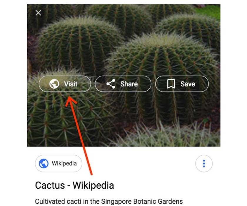 Google Image Search No Longer Offers 'View Image' Button