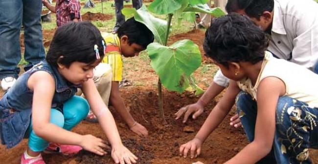 Making Pakistan green: Plant trees for saving future