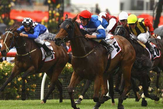 French horse Dunaden wins Melbourne Cup