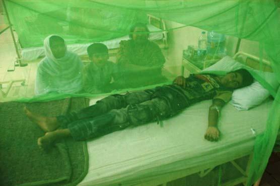 4 more die of dengue in Lahore