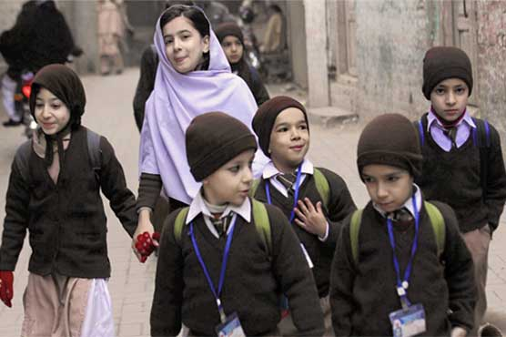 Sindh govt announces winter holidays in educational institutions