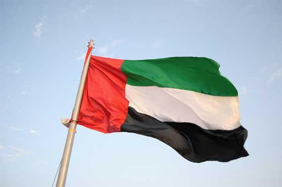 UAE tries 'Hezbollah', 'Qaeda' cell members: media