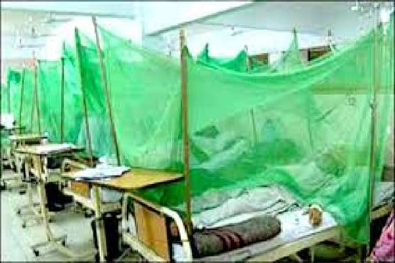 Stagnant water in Peshawar shops caused dengue outbreak: WHO report