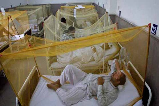 More than 3,900 people fall prey to dengue in Peshawar