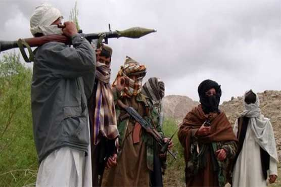 Taliban release kidnapped Pakistani workers of polish company