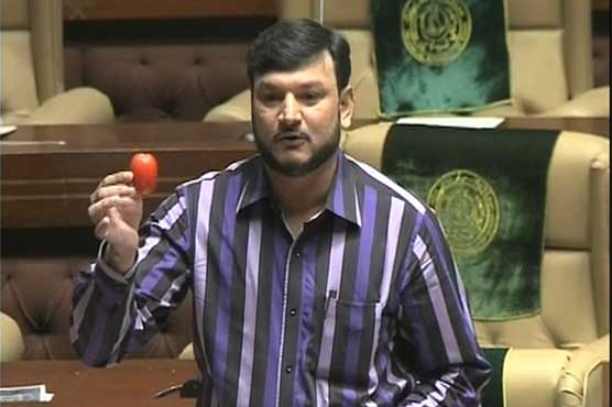 MQM leader brings tomatoes to Sindh Assembly to highlight price hike