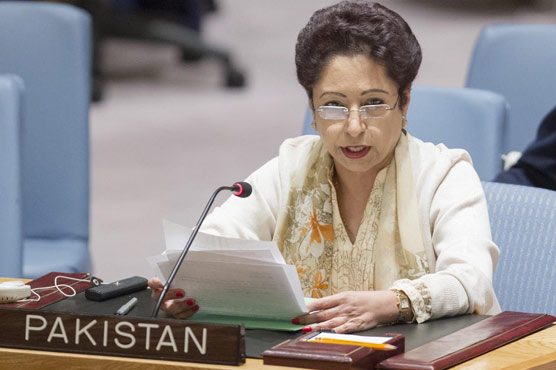 Only political settlement can bring peace in Afghanistan: Pakistan