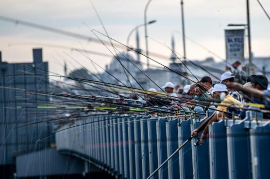 Istanbul anglers keep up tradition despite stocks alarm