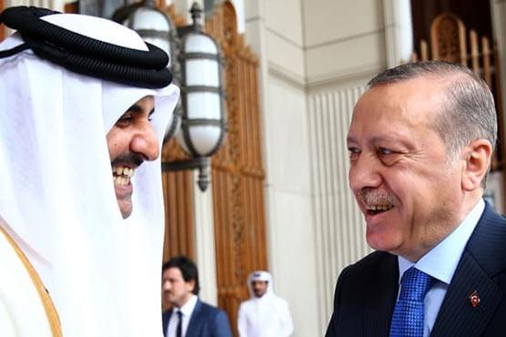 Erdogan hosts Qatar emir in first foreign trip since crisis