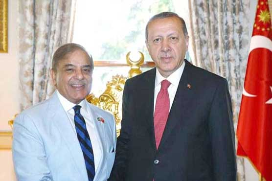 Turkey wants to see Pakistan politically, economically, security-wise fully strengthened: Erdogan