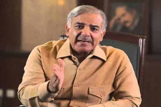 Shehbaz Sharif meets Chaudhry Nisar, asks him to 'stay with party'