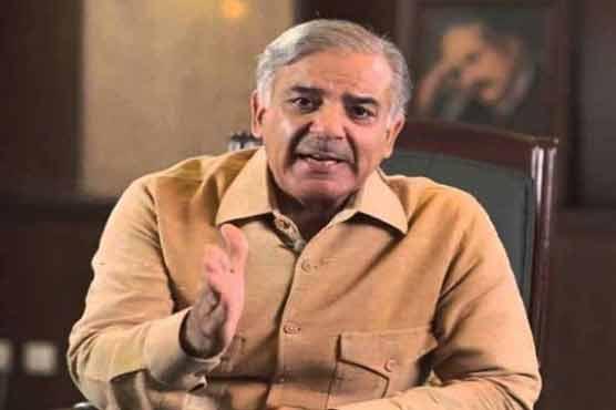 Disgruntled Chaudhry Nisar meets Shehbaz Sharif in Lahore