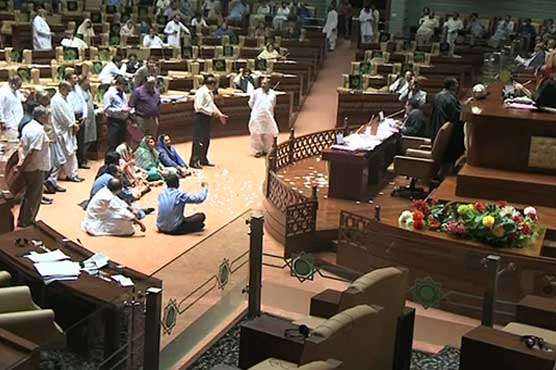 'Go Shehla Go' chanted in Sindh Assembly for rejecting adjournment motion