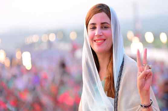 PTI gained overwhelming majority in KP due to past performance: Zartaj