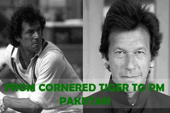 Imran Khan's Struggle: From Cornered Tiger to Prime Minister