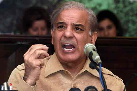 Shehbaz demands formation of parliamentary body to probe into 'election rigging'