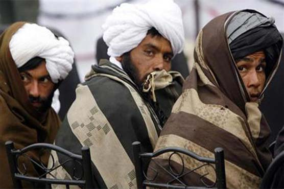 Taliban to mull 3-month truce proposal: USA negotiator