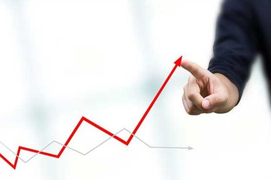 Pakistan aiming for 6% GDP growth, Haroon tells Turkish investors