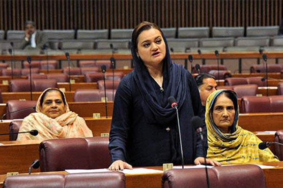 Minister said that the Constitution of Pakistan had three pillars and the parliament was one of them