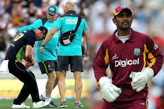 Chris Lynn injures shoulder in Trans-Tasman T20 final