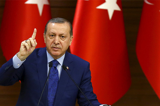 Erdogan threatens to 'nip in the bud' new US-backed Syria force