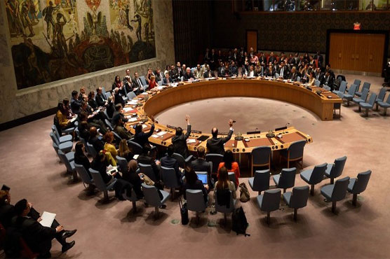 UN Security Council refrains from condemning Turkey