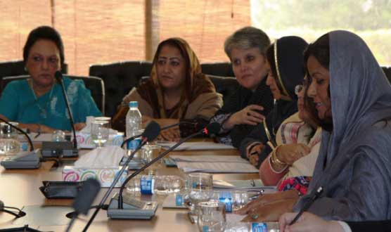 Election 2018: PPP, PTI, PML failed to bring women on political horizon