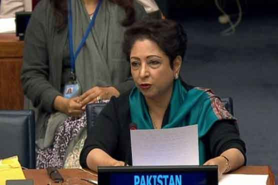Afghan parties, world community urged to help promote peace in Afghanistan