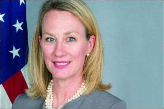 USA  supports Pakistan's integrity: Wells