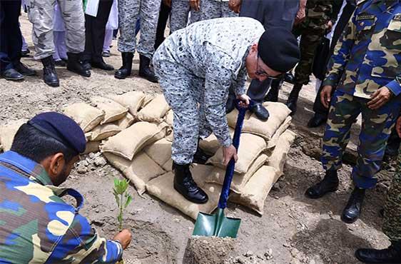 Pakistan Navy launches mangroves plantation campaign