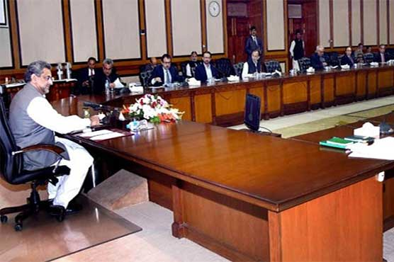 ECC approves provision of additional guarantee of Rs 20 billion for PIACL