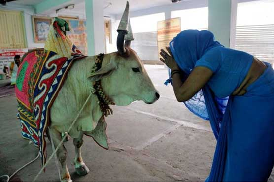 Image result for Muslim beaten to death in India for allegedly killing cow