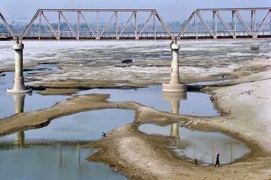 Shortage of water in Sindh could lead to food scarcity
