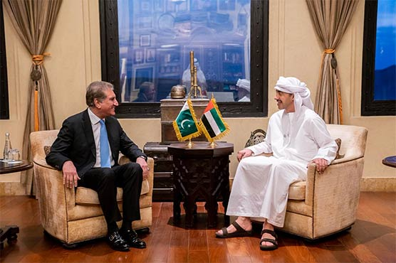 FM Qureshi discusses bilateral ties with UAE counterpart